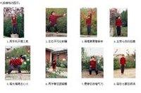 八段锦练功图示