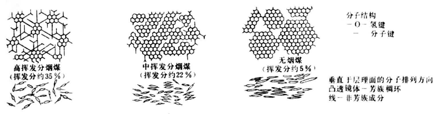 0%的贫煤阶段,煤的分子结构单元出现方向性,开始有序化,很可能是由于