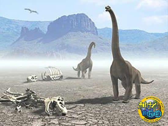 关于恐龙灭绝灭绝的小报图片_恐龙灭绝的资料和图片_关于恐龙灭绝的资料_