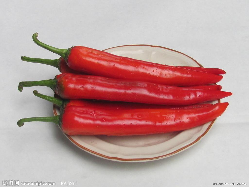 最辣的是印度魔鬼椒.辣椒以果实