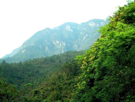 鹤山市在大雁山风景区内设立了名人馆