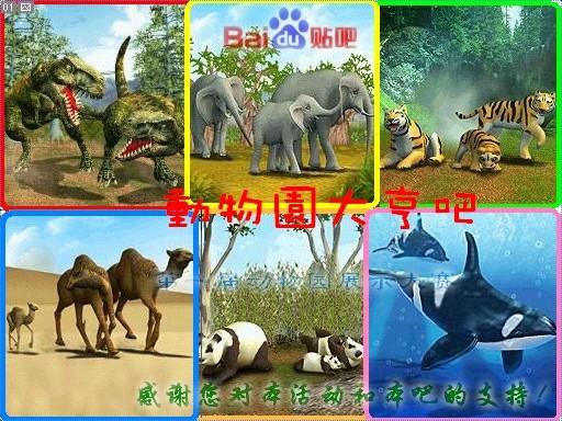 <b>野生动物园大亨</b>