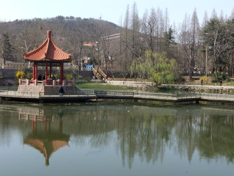 清新悦目--青岛中山公园 (绝品收藏)