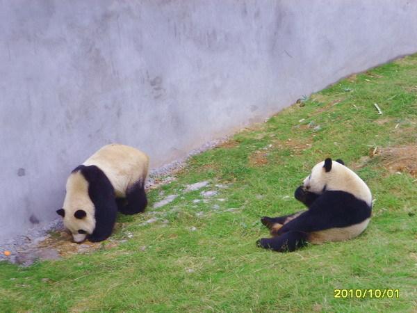 无锡动物园_360百科
