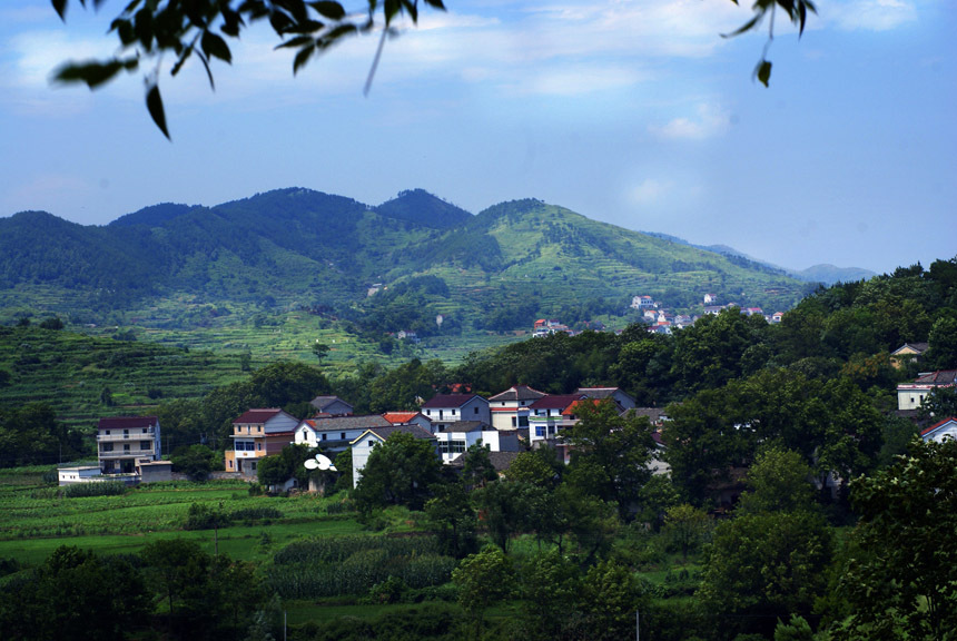 广东省惠来县的风景